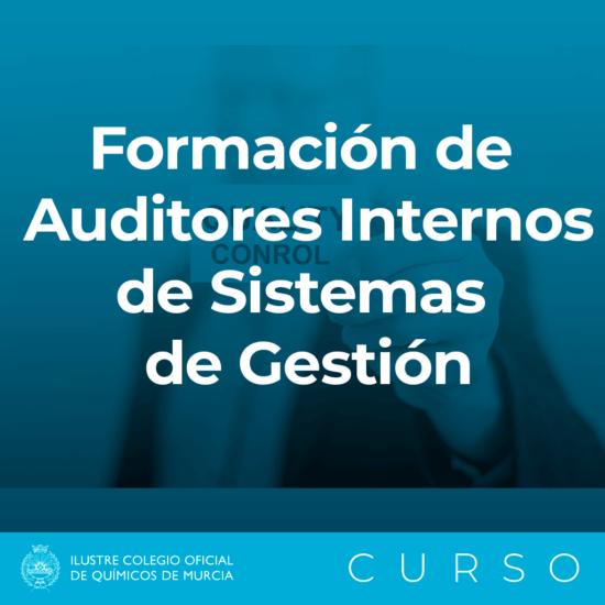 Caja FORMACION AUDITORES INTERNOS SISTEMAS DE GESTION 1 1