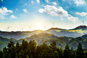 sunny landscape with windmills